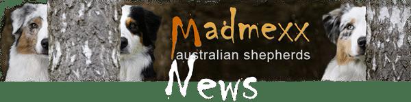 Madmexx_Logo_News