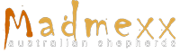 madmaxx-logo