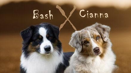 Madmexx News Bash x Cianna